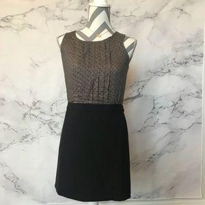 NWT Loft Colorblocked Work Dress